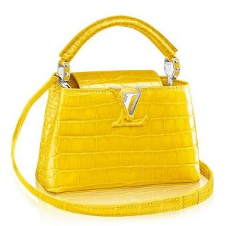 Louis Vuitton Capucines Mini Crocodile Bag N92562 bag