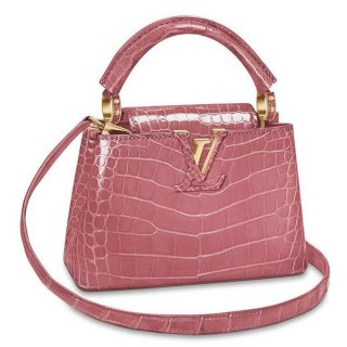 Louis Vuitton Capucines Mini Crocodile Bag N95003 bag