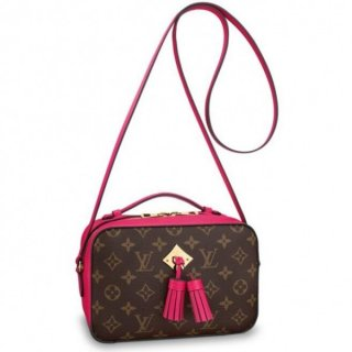 Louis Vuitton Freesia Saintonge Bag Monogram M43557 bag