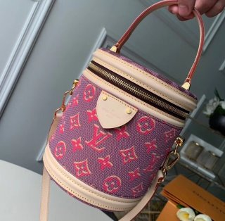 Louis Vuitton Monogram and Damier Canvas Cannes Beauty Case Bucket Bag M43986 bag