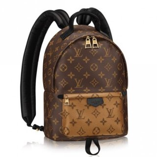 Louis Vuitton Palm Springs PM Backpack Monogram Reverse M43116 bag