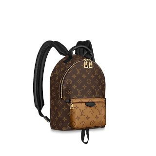 Louis Vuitton Palm Springs PM Monogram Canvas Backpack M44870 bag