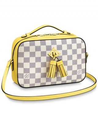 Louis Vuitton Saintonge N40154 yellow bag