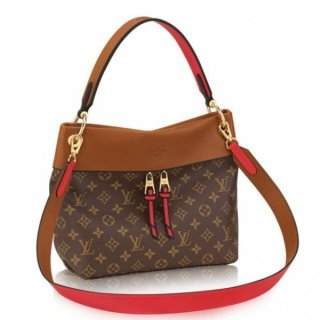 Louis Vuitton Tuileries Besace Bag Monogram Canvas M43157